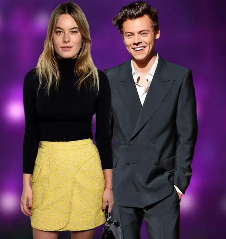 Camille Rowe with her ex-boyfriend, Harry Styles. | Source: standard.co.uk